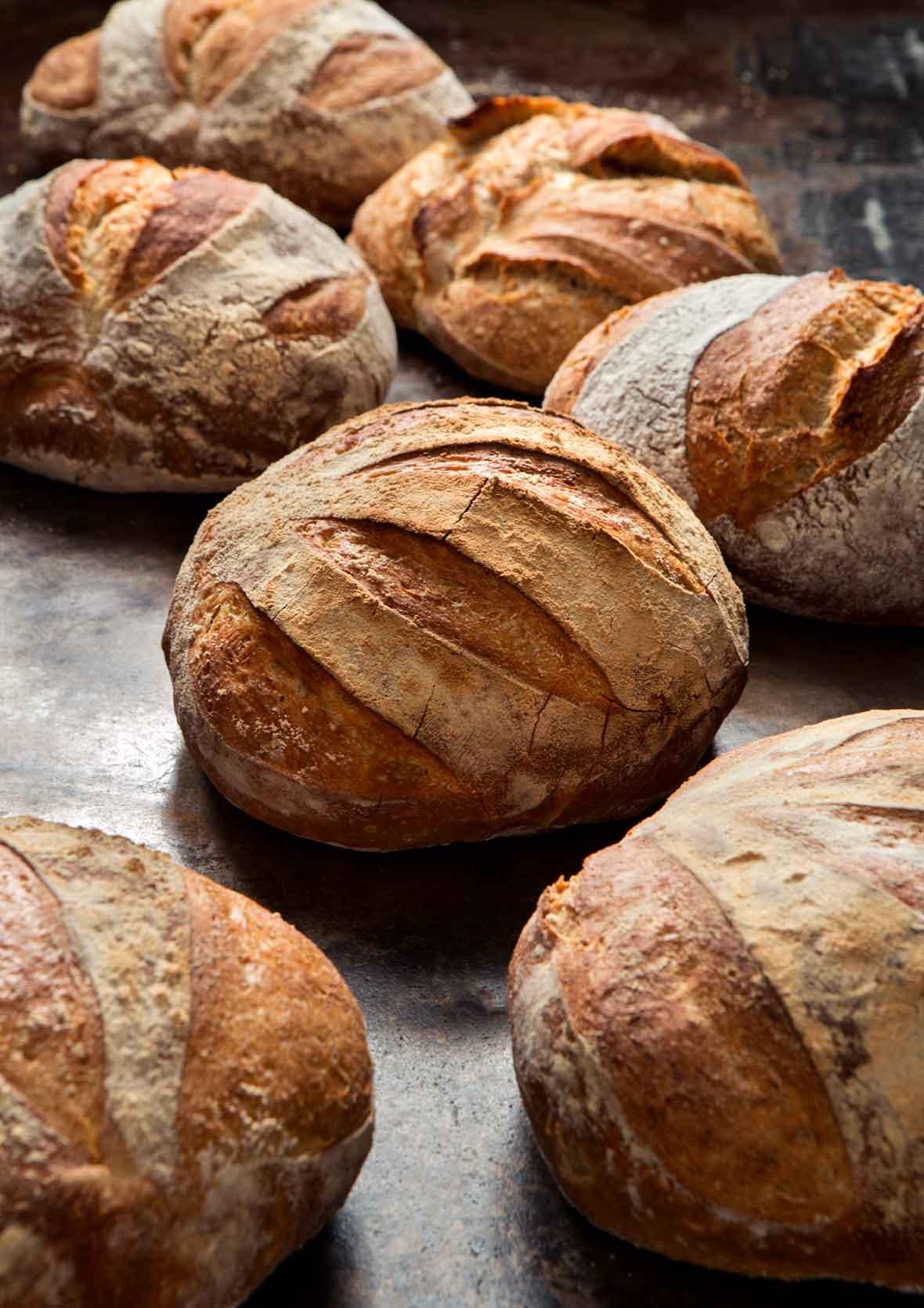 5 Minute Artisan Bread Recipe